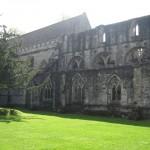 nog meer cathedraal