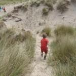 pad door de duinen